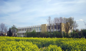 Ansicht Schule Bodelstadt